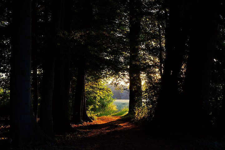先が見えない暗闇の中を迷わず全力では走れない。出来ることから一歩一歩切り開いていけば良い。