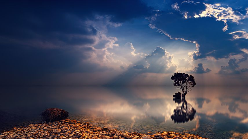 自分の心を知る方法。自分の心を知れば心の平穏が訪れる