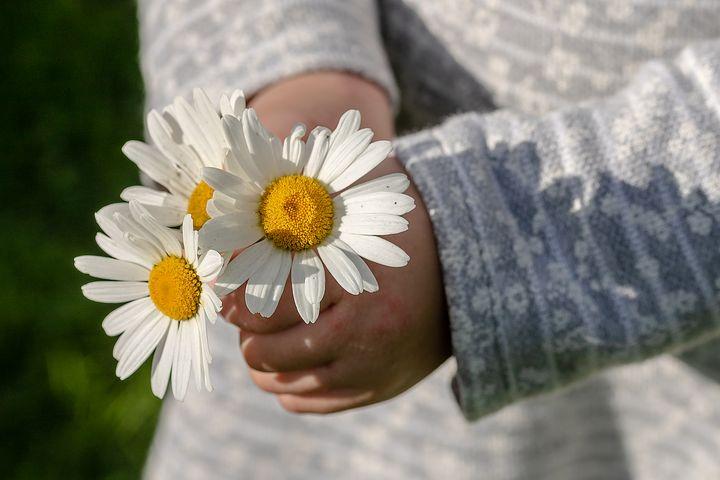 感謝の心を持つと良いと言われるけれどなんで感謝の心を持つと良いのか