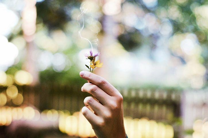 スピリチュアルを学ぶことによって心を整える。そして行動によって現実を変える