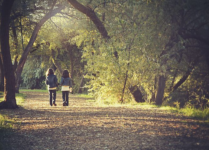 無理に友達を作らなくても良い。仲の良い人は自然と引かれ合っていくもの