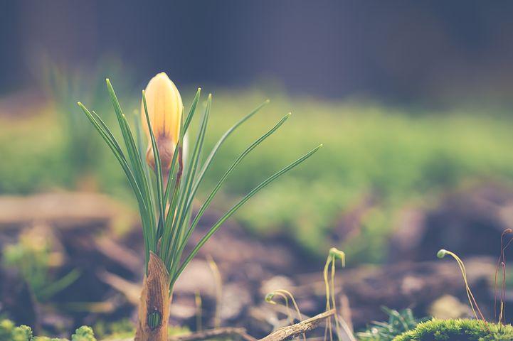 正しさを求め続けている状態が正しい。満足した瞬間成長は止まり下降を始める